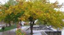 پارک معلم فریدونشهر