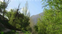 طبیعت شهرستان فریدونشهر
