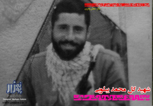 shohada fereydunshahr (15)