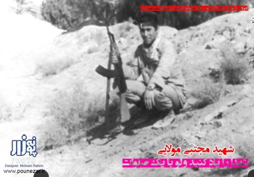 shohada fereydunshahr (24)
